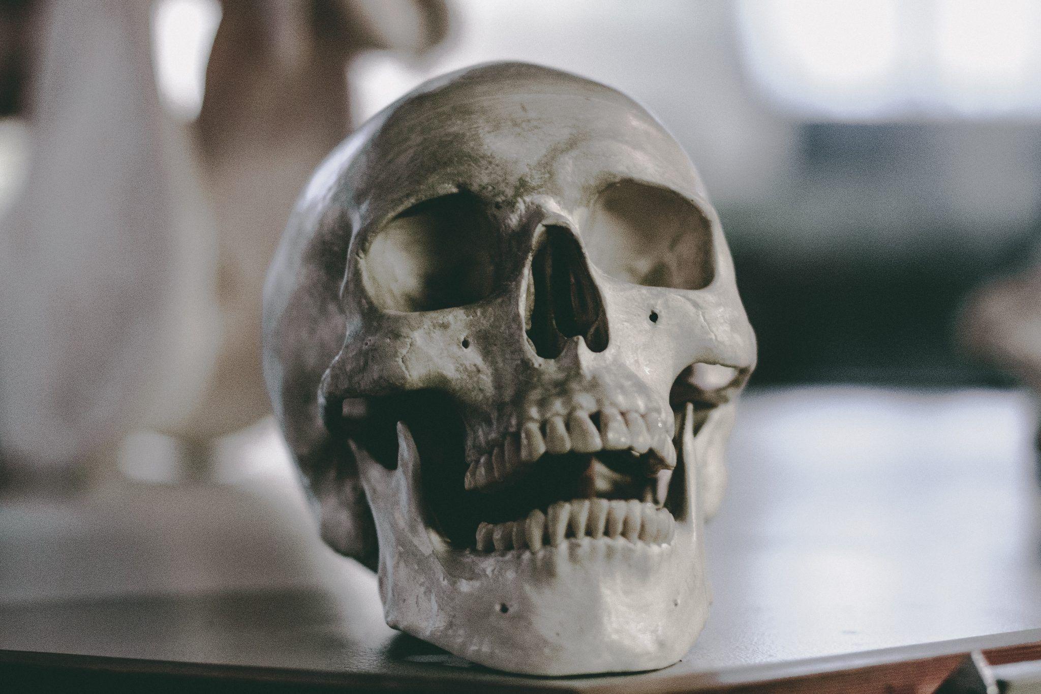 Odontología Forense Su Importancia (Parte II)