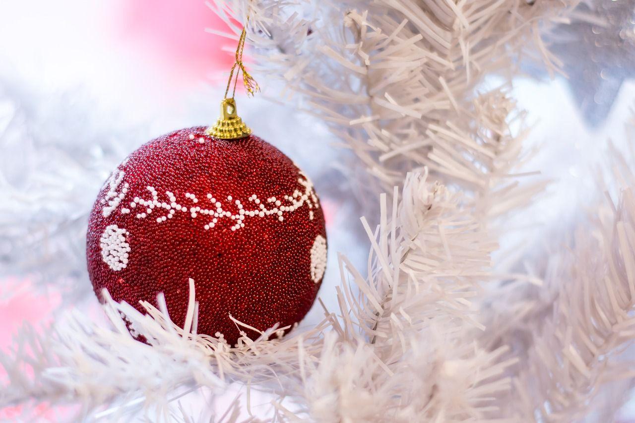 Feliz navidad: Tiempo de Esperanza